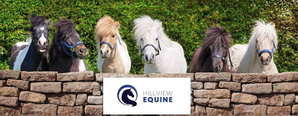 TellFreddie Tell Sven Mental Health Awareness Team (miniature shetland ponies