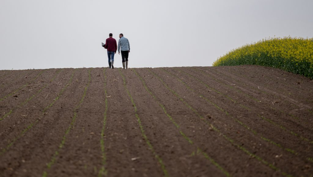 Farmers with laptop in field talking about mental health